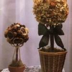 Апельсиновое дерево – декор для дома