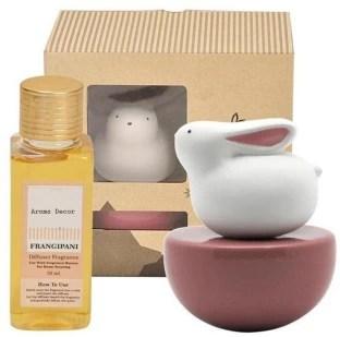 Aroma Decor Ceramic Oils Diffusers Set Pack