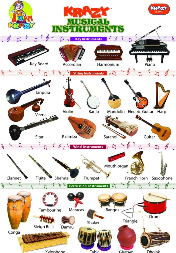 Mind Wealth Krazy Musical Instruments Chart Price In India