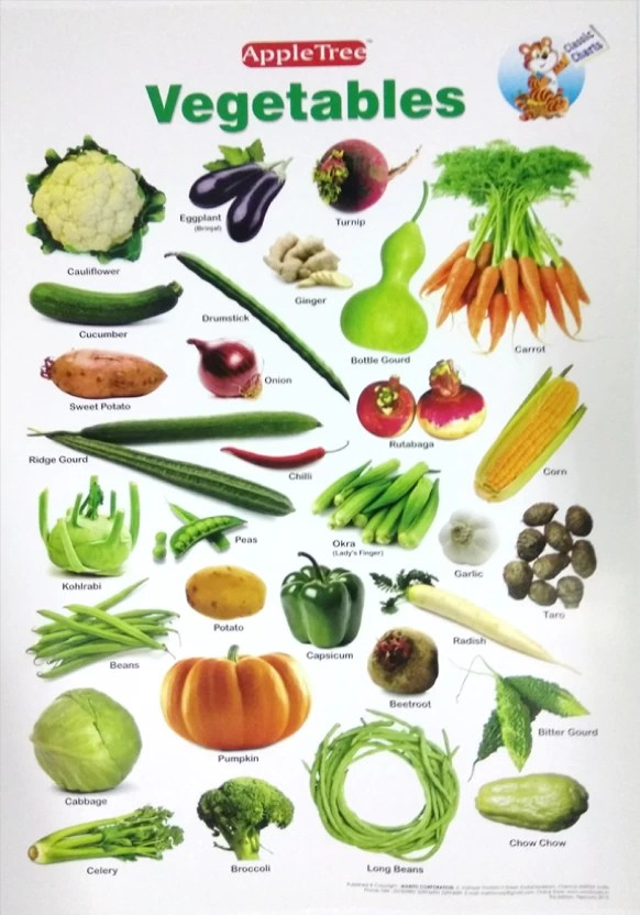Apple tree vegetables preschool inch wall chart photographic also rh flipkart