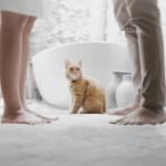 cat 3 - Ипотечные каникулы – особенности оформления, причины отказов банков