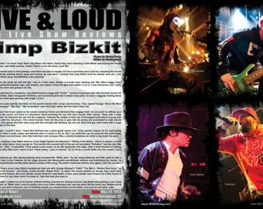 Limp Bizkit, Concert Review