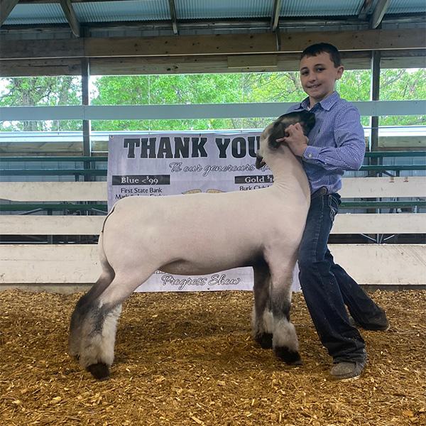 Rule Sheep Co. Winners