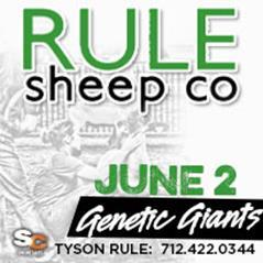 Rule Sheep Co. June 2 Online Sale