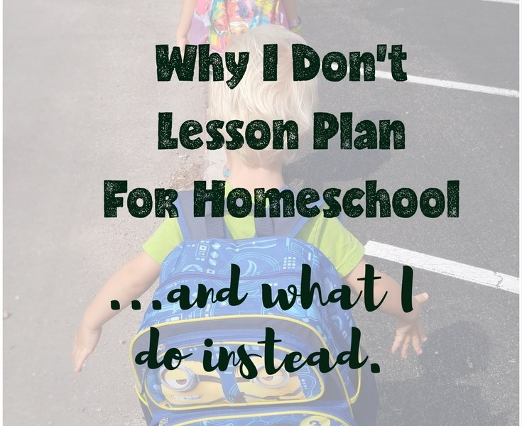 unschool unschooling homeschooling lesson plan