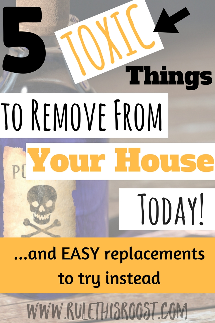 Watch How to Remove Harmful Chemicals From Your Home Using Houseplants video