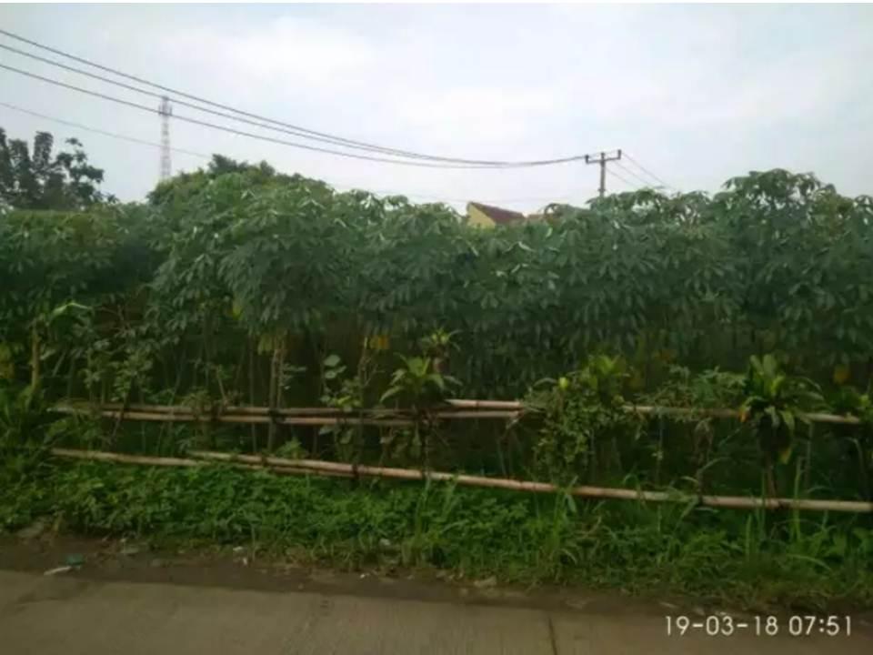 Jual Tanah Bogor