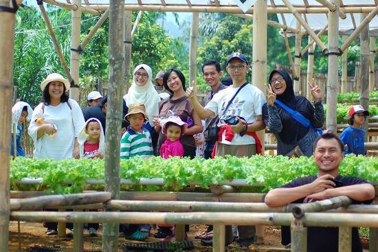 AAA Organic Farm-01