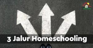 Homeschooling Jalur Akademis, Profesional, dan Entrepreneur