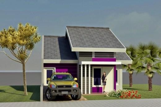 Gambar Rumah Minimalis 1 Lantai 9