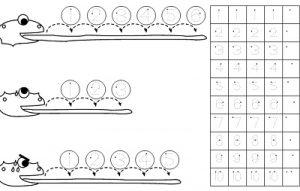 Latihan Berhitung Panjang Lidah Kadal Dan Menulis Angka 1 10 Rumah