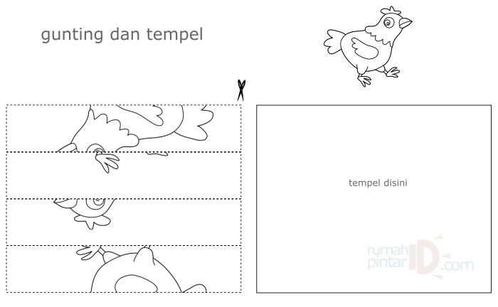 puzzle dan jigsaw anak ayam