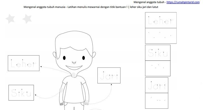 Sketsa Mewarnai Untuk Anak Evi Gustami Viewinviteco