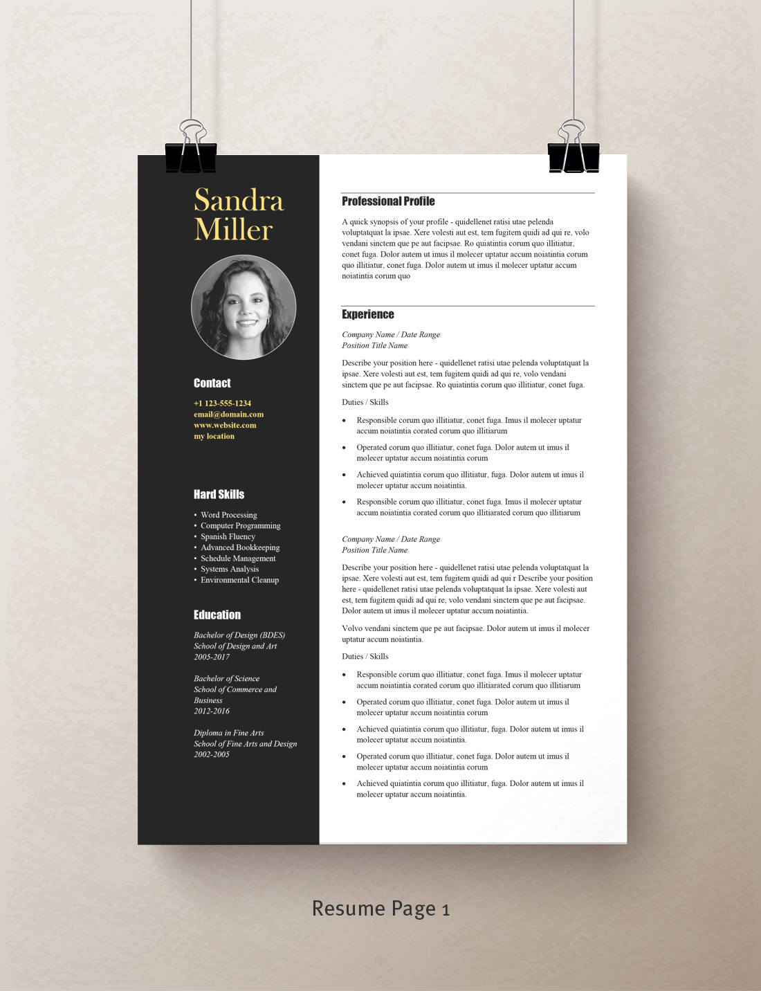 contemporary resume template  professional resume template