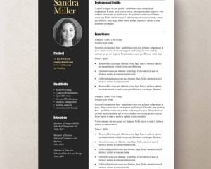 contemporary resume template professional resume template word 59b2c4b41 - Contemporary Resume Template