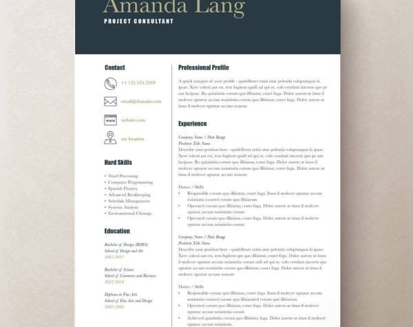 modern resume template professional resume template word - Resume Template It Professional