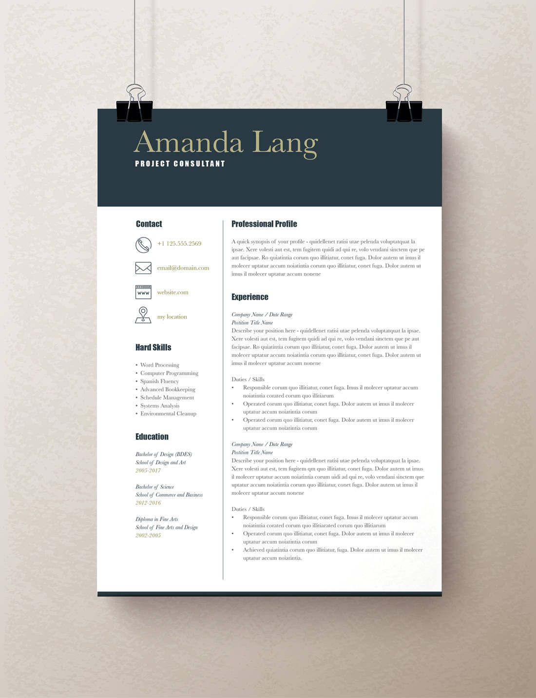 Modern Resume Template Professional Resume Template Word 59b2c4bc1.