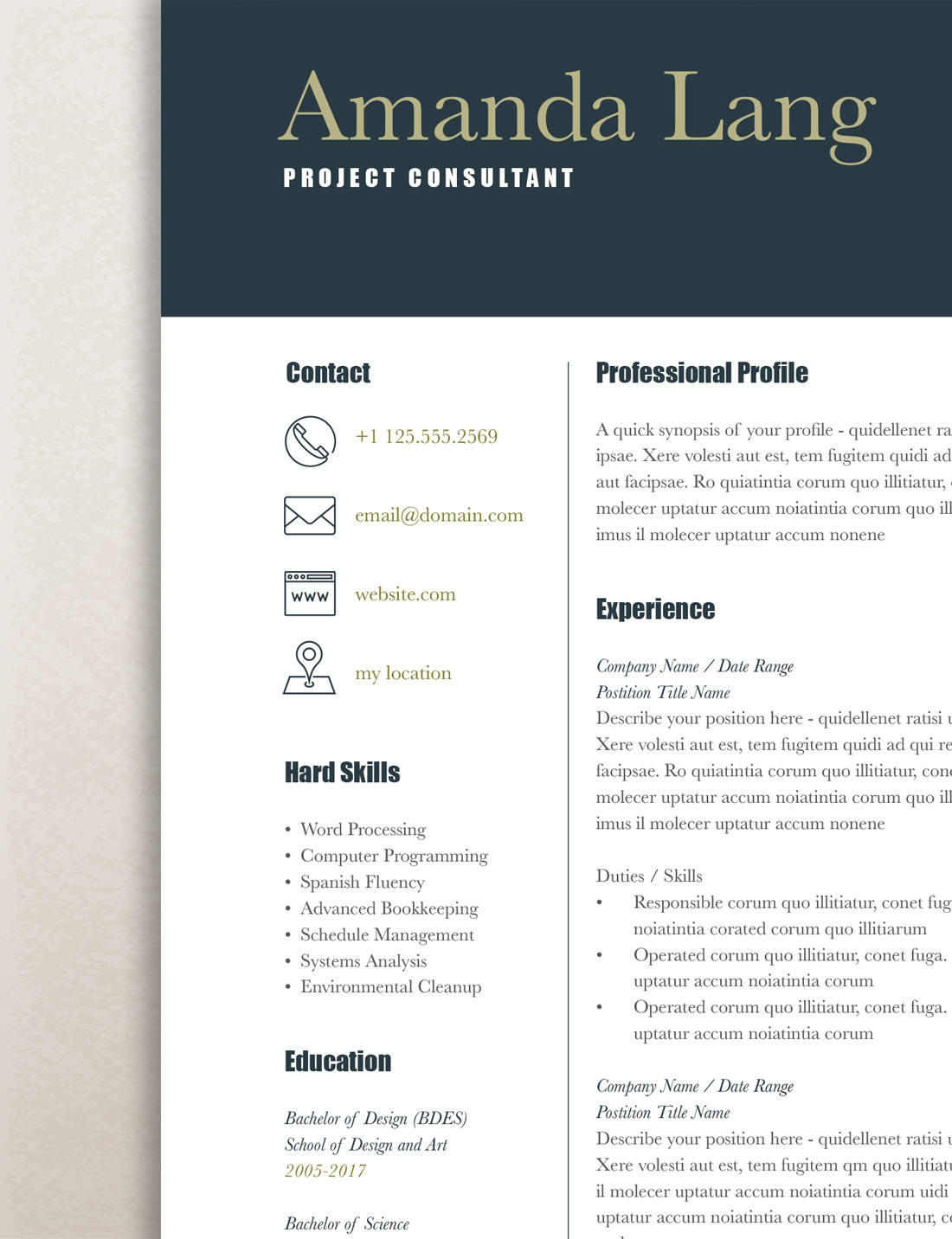 Resume Template Word It Professional Modern Resume Template Professional Resume Template Word