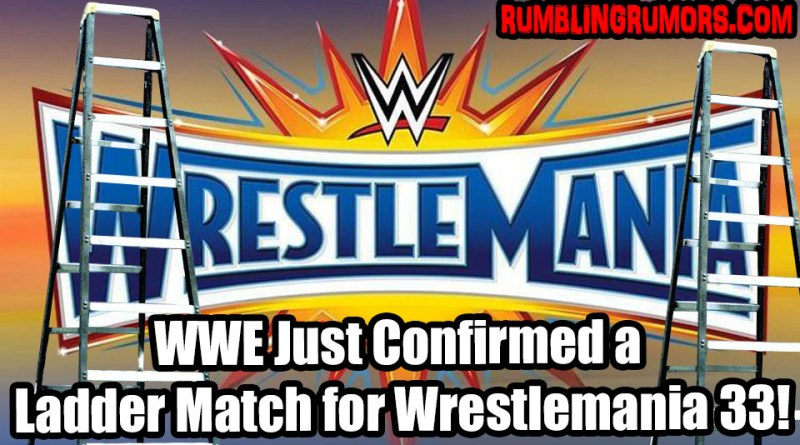 WWE Just Confirmed a Ladder Match for Wrestlemania 33!