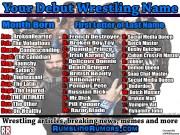 Your Debut Pro Wrestling Name! (April 2018)