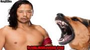 Breaking: Shinsuke Nakamura Bit By a Police Dog, Placed On Injured List.
