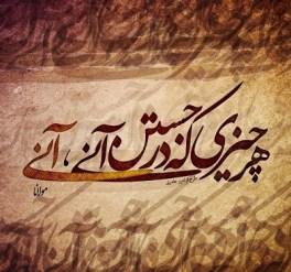 Rumi Quotes In Hindi (11)