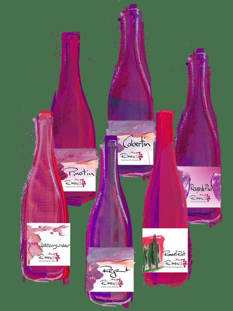 Probepaket - Rotweine für Genießer
