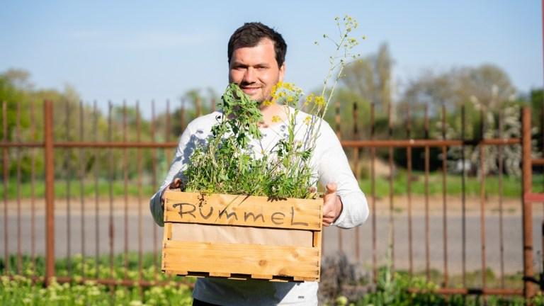 Karl Rummel, Winzermeister mit seiner Philosophie engagiert er sich über den Bio-Weinbau hinaus