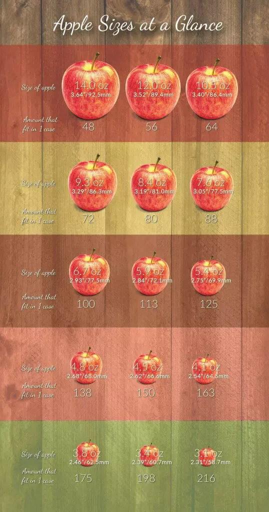 Large Fuji Apple Calories : large, apple, calories, Apple, Nutrition, Facts, Applecalories.com