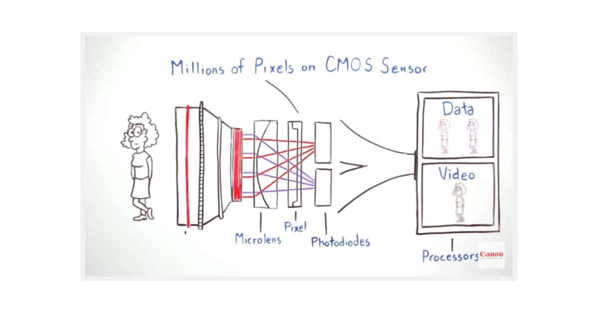 Canon Dual Pixel Autofocus Explained In Cartoon!