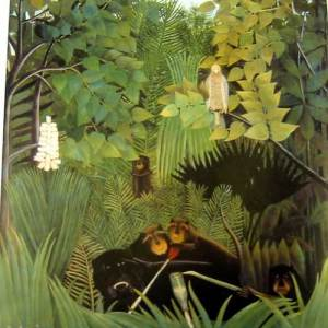 Henri Rousseau:  Bird drawing