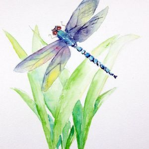 Creating A Watercolor Dragonfly with MaryLeah