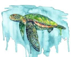 Sea Turtle Watercolor Project with MaryLeah