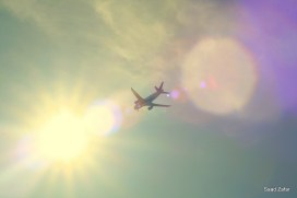 Fly me to the Sun