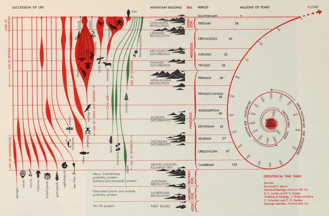 diagram of evolution timeline usb charger cable wiring david rumsey historical map collection maps