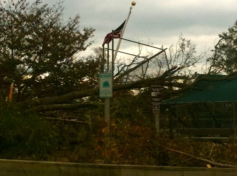 Rumson's Piping Rock Park after Sandy blew through. Photo/Elaine Van Develde