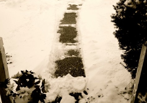 Snow angels in Fair Haven paved the way to work for an editor. Photo/Elaine Van Develde