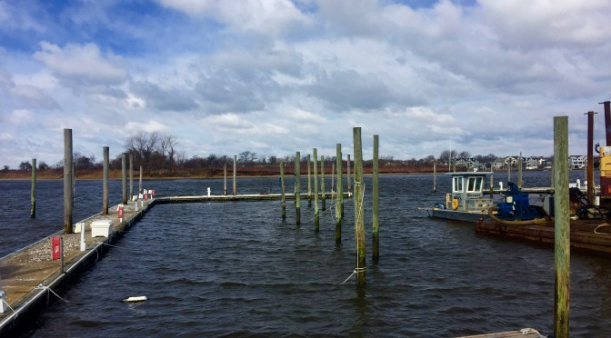 Focus: Morning Rumson Island View