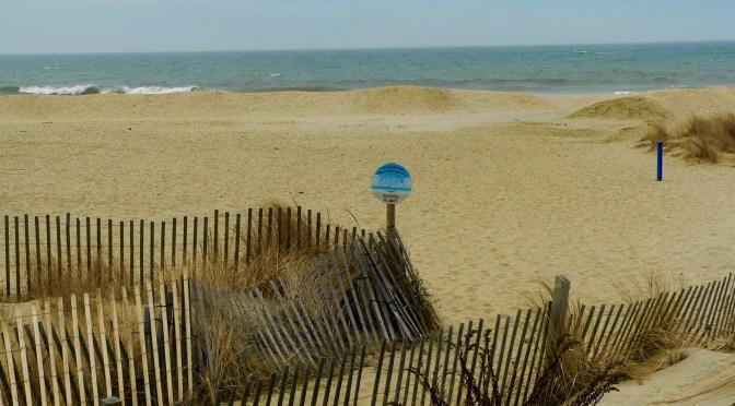 Focus: Sea Bright Winter Beach