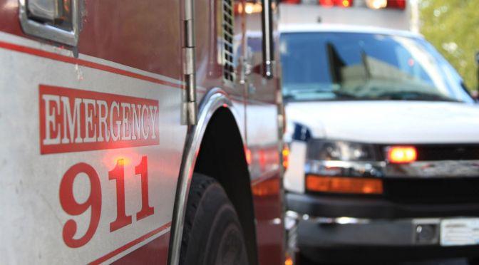 Prosecutor: Teen, Dog Die in Fire