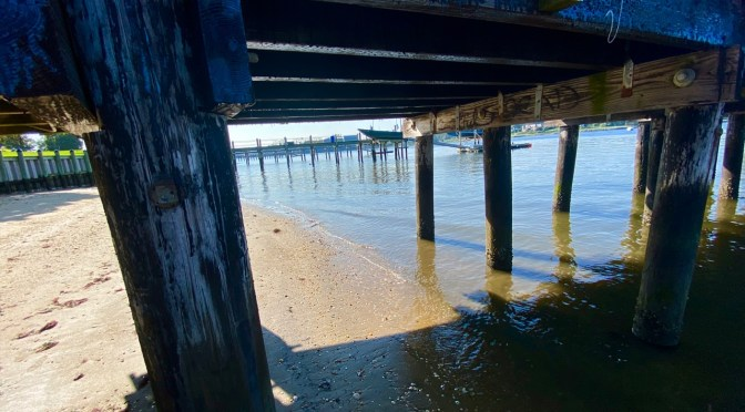 R-FH Area Weekly Snapshot: Looking Back & Ahead, Weather, Tides, COVID & Pics