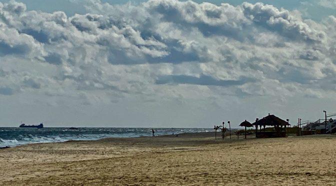 Focus: Spring Beach Daze