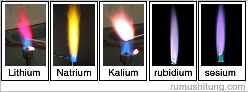 nyala pembakaran logam alkali