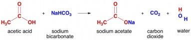 reaksi asam asetat dengan natrium bikarbonat