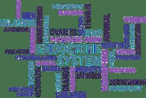 Kelenjar Endokrin dan Hormon Yang Dihasilkan