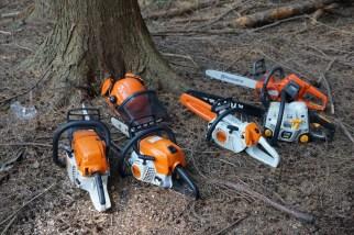 Lumber Jacks in Training