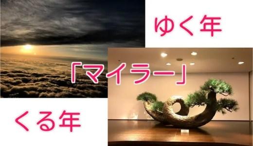 【2018~2019年】マイラーゆく年くる年
