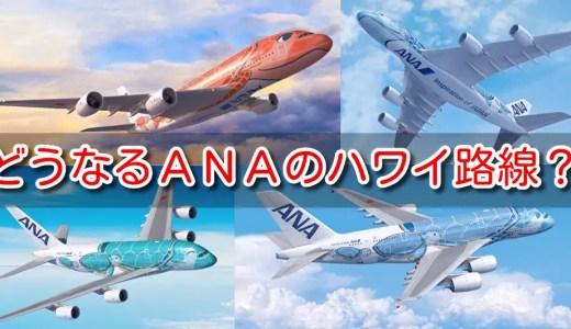 ANAの「FLYING HONU」フィーバーは続くのか?勝手に予想してみた(^_^)