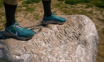 Nike Pegasus Trail 3, une paire offrant un amorti confortable inspiré de la Pegasus 38.
