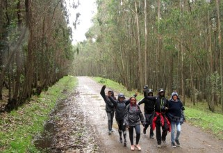 run-africa-ethiopia-addis-ababa-2017-team-building-diageo-entoto-hike (13)